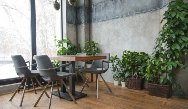 Cafe Interior With Green Decor